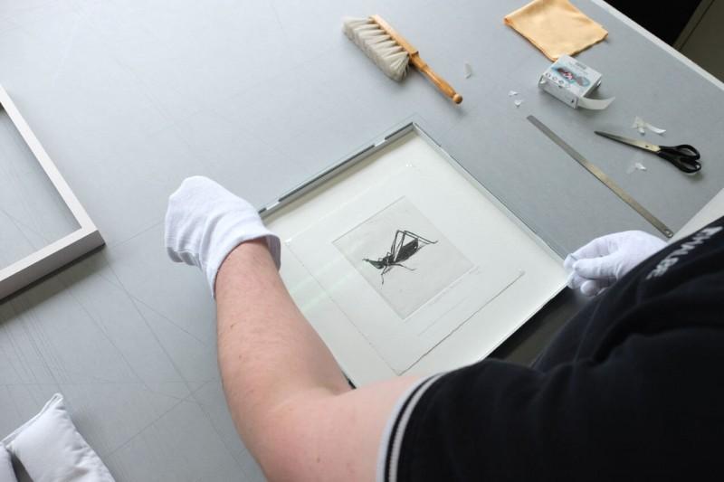 Verglasen - Frei montiert mit Fotoecke im Distance Rahmen