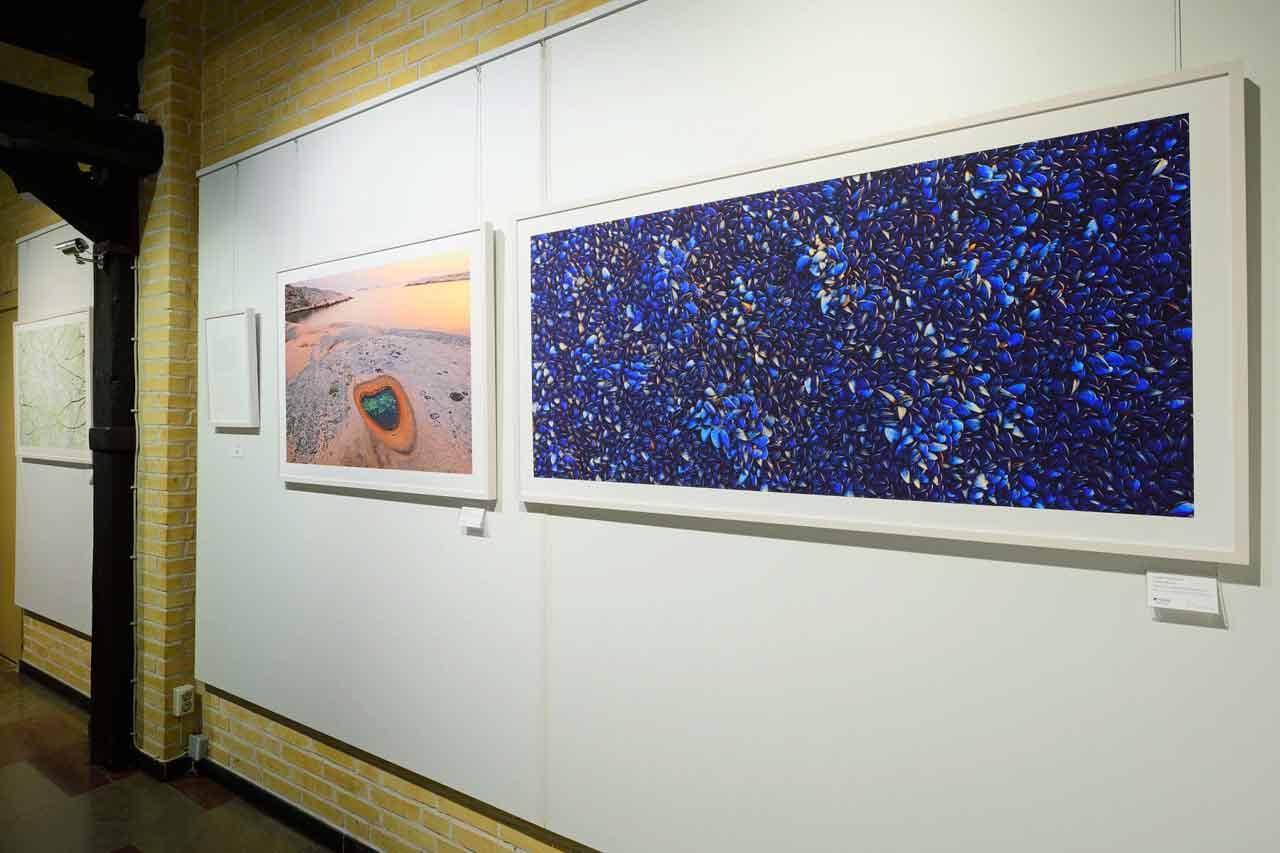 Ausstellung LYS von Bartocha & Bollmann in HALBE Bilderrahmen