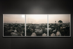 Mehrteilige quadratische Rahmung einer Panorama-Aufnahme als Tryptichon
