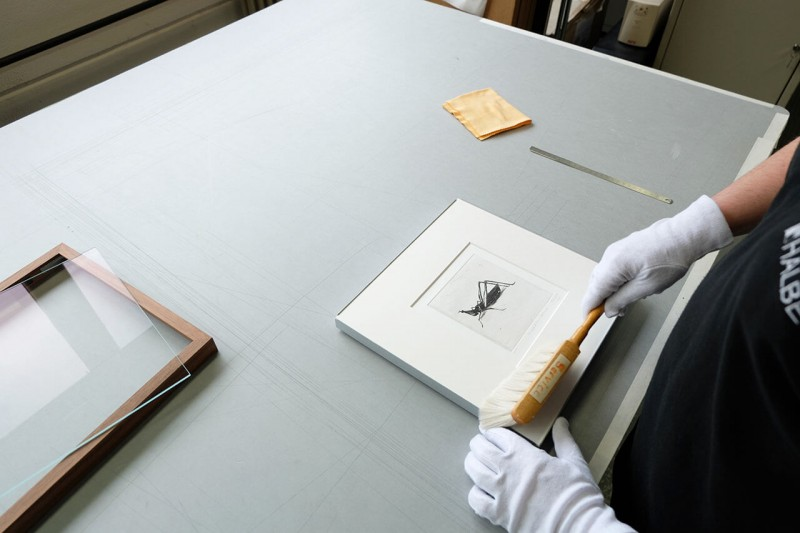 Staub und Fremdkörper auf dem Bild mit einer Handbürste entfernen